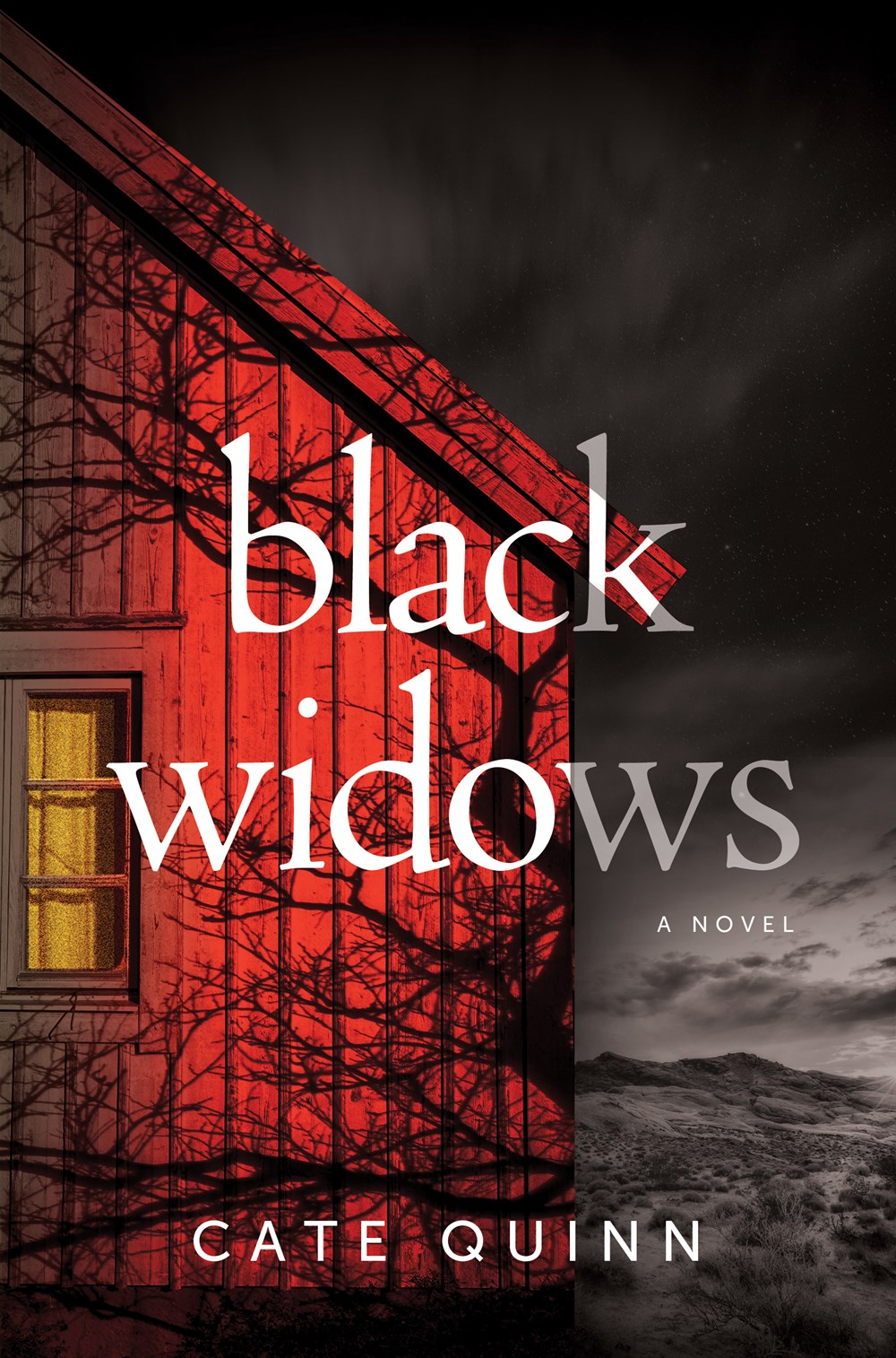 Black Widows by Cate Quinn