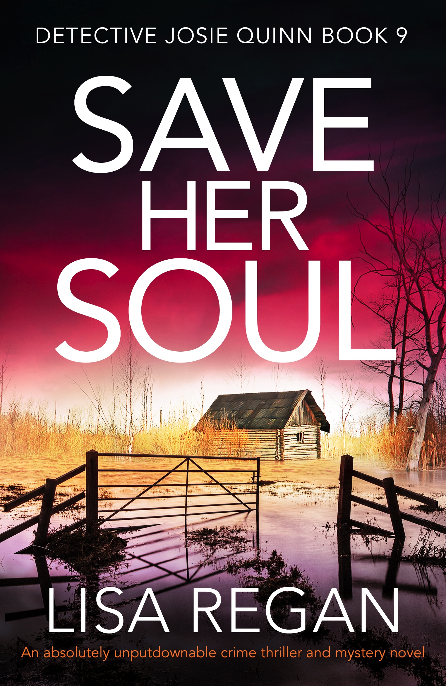 Save her Soul by Lisa Regan @lisalregan @bookouture #BookReview #DetectiveJosieQuinn #BlogTour #Book624 #NetGalleyCountdown